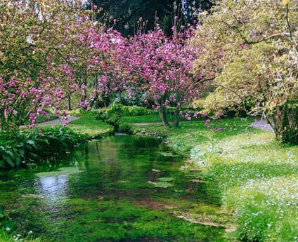 Primavera al giardino di ninfa apertura straordinaria per for Giardino di ninfa orari