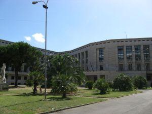 palazzo M
