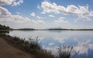 Bordo lago