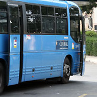 Bus Cotral