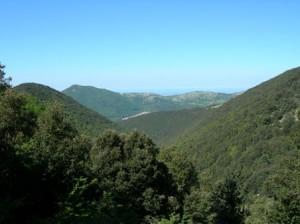 Monte Capreo (foto da Trekking 2000)