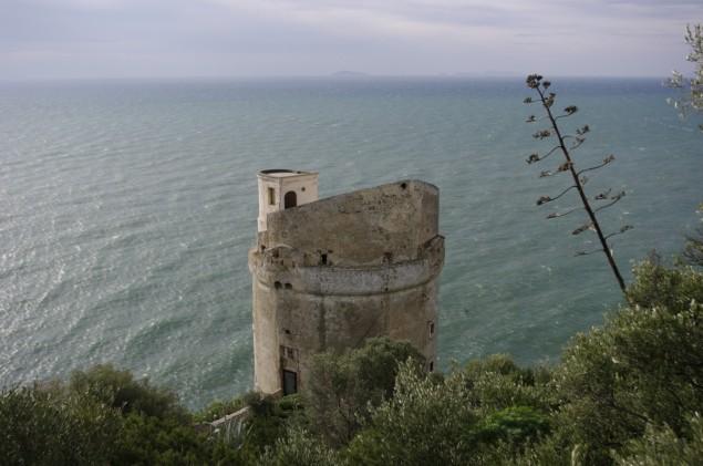 torre-del-fico
