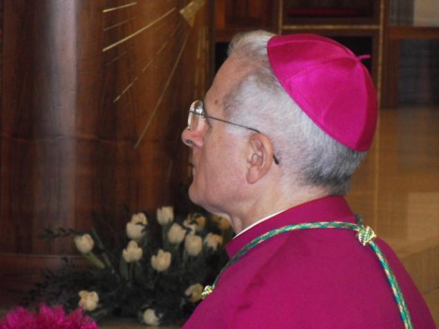 Il vescovo Crociata