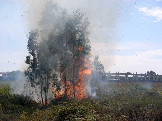 Incendio Zona Gian Filippo -Migliara 50