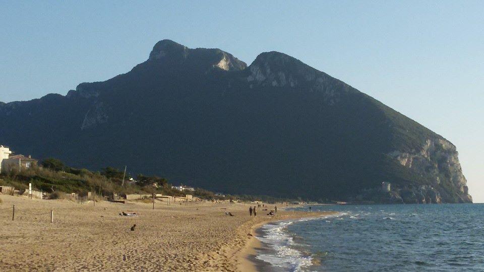 Matrimonio Spiaggia Sabaudia : Nozze con ruspa sulla spiaggia di sabaudia lanti ecologico