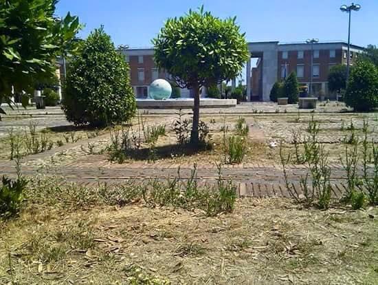 I giardini di Piazza del Popolo