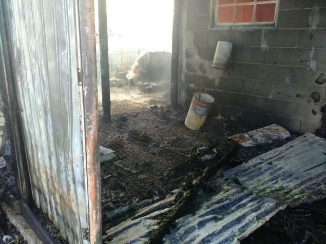 incendio 2 terracina 19 ago 2015