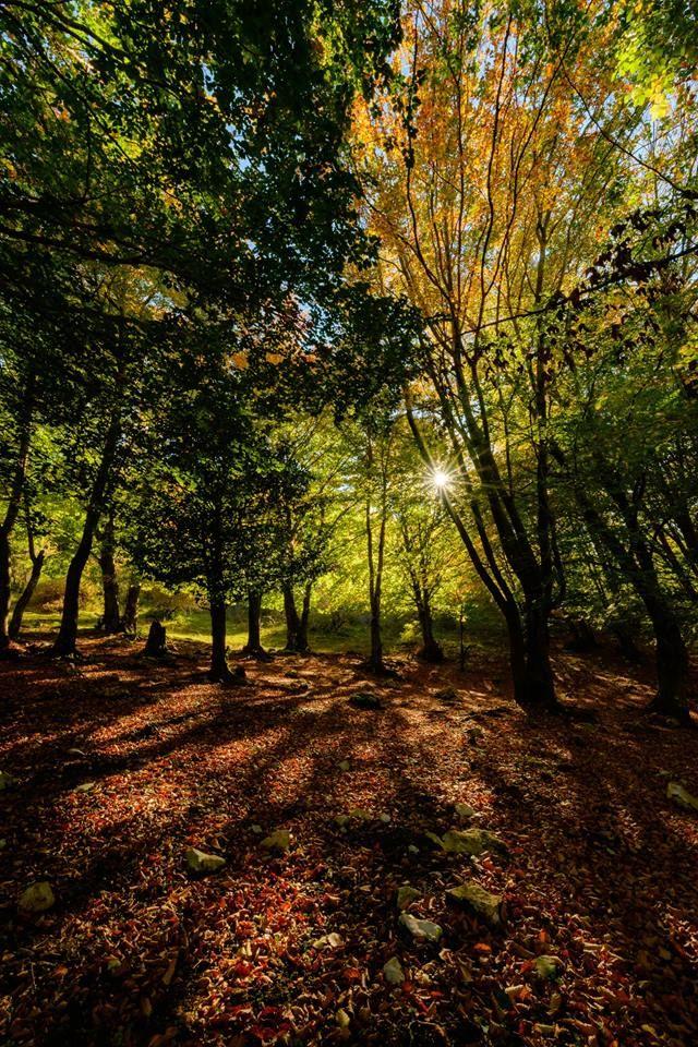 autunno-sui-monti-lepini
