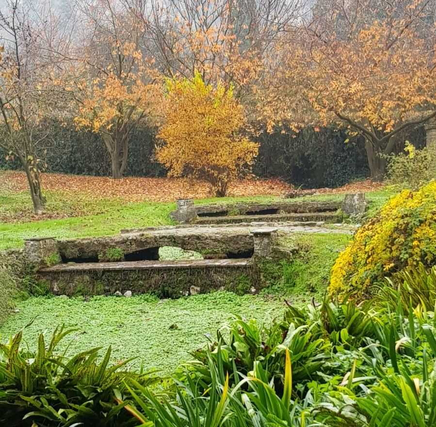 Siccit a ninfa addio salti d acqua nel giardino pi for Giardino di ninfa orari