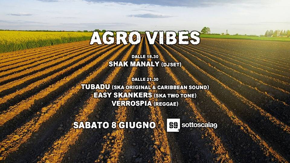 agro-vibes-sottoscala9