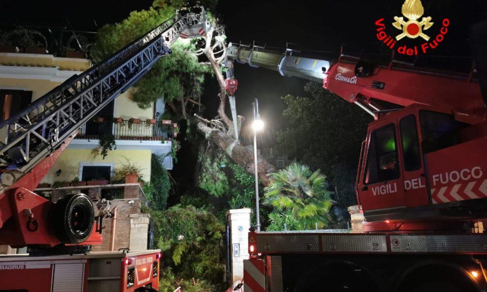 Maltempo, albero si abbatte su una casa a Terracina - Lunanotizie